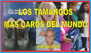 LOS TAMANGOS MÁS CAROS DEL MUNDO (el ladri sigue operando)