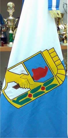 bandera-justicialista-peronista-de-ceremonia-peron-evita-D_NQ_NP_19881-MLA20179902484_102014-F