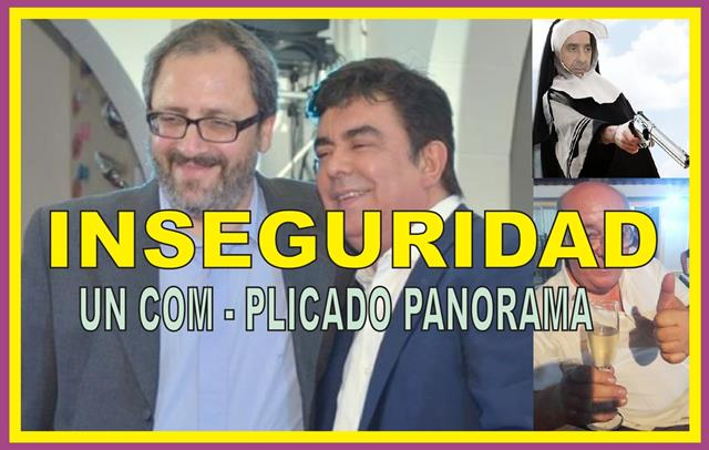 INSEGURIDAD: UN COM – PLICADO PANORAMA