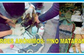 HÉROES ANÓNIMOS: ¡!!NO MATARAS¡¡¡