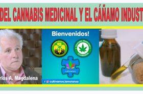 USO DEL CANNABIS MEDICINAL Y EL CÁÑAMO INDUSTRIAL